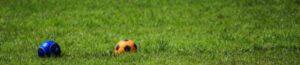 芝生におかれたボール2つ